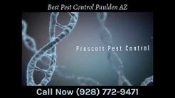 Best Pest Control Paulden AZ