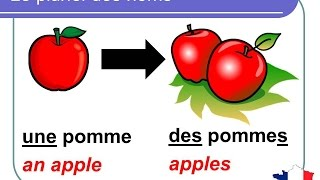 French Lesson 92 - Plural nouns (Grammar Rules Pronunciation) - Le pluriel des noms en français