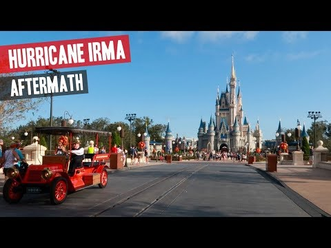 Magic Kingdom Hurricane Irma Aftermath & Update (Low Crowds, Damaged Tree's & More)