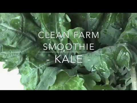 CLEAN FARM KALE SMOOTHIE เปิดสูตรน้ำปั่นผักสุดอร่อยของคลีนฟาร์ม