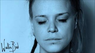 I Am So Tired of That Line - Wallis Bird