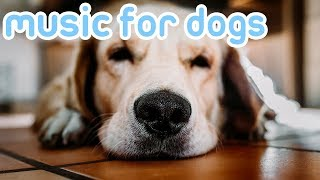 11 HOURS of Deep Separation Hyperactivity Music to Relax Your Dog! NEW