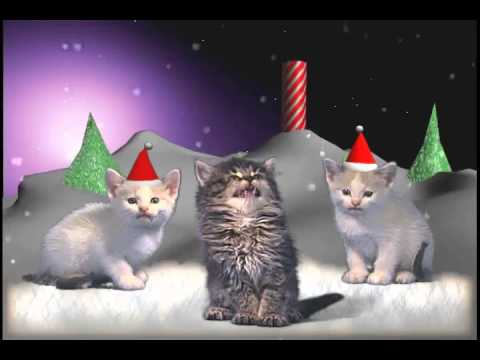 Jingle Cats - Silent night 10 HOURS
