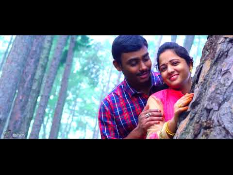 Nevente Nenunte Bavunde Chala (Rarandoi Veduka Chuddam) Movie Song