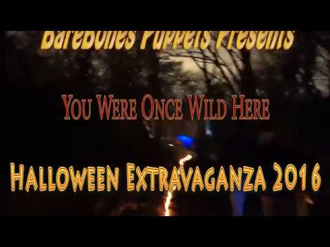 BareBones Puppets - You Were Once Wild Here 10/30/2016