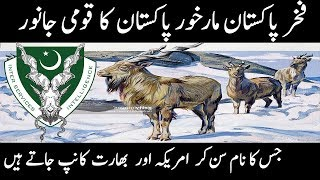 National animal of pakistan markhor || symbol of pakistan intelligence agency isi || urdu Cover