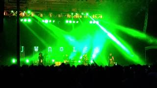 Jungle - Smoking Pixels/Platoon (Live)
