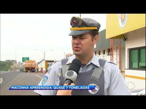 Polícia apreende quase sete toneladas de maconha no interior de SP