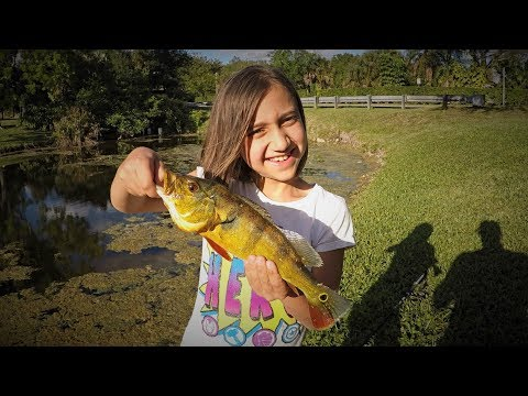 Surprise Catch While Bass Fishing In A Florida Canal!!!