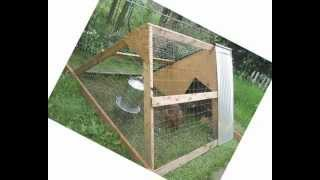 Cheap building chicken coop plans | Easy to use detailed building chicken coop plans | download