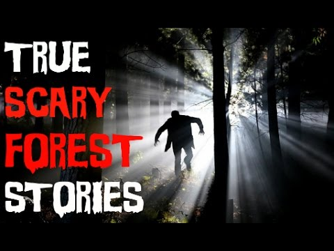 5 TRUE SCARY Forest/Woods Encounter Stories  From Reddit