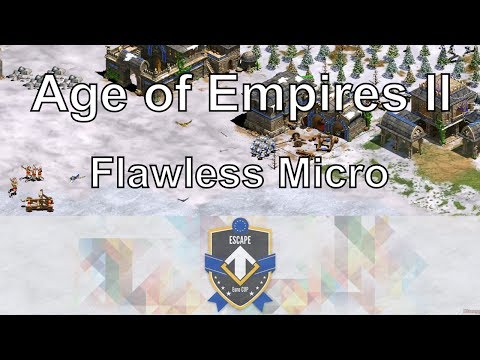 Aoe2: Flawless Micro (DauT vs Liereyy) - Euro Cup B Finals #3