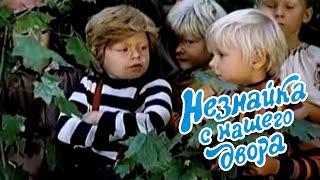 Незнайка с нашего двора (1983) детский музыкальный телефильм