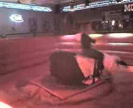 tammy mechanical bull riding