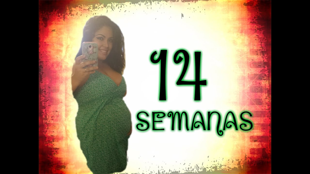 14 SEMANAS DE EMBARAZO/PANCITA/SINTOMAS - YouTube
