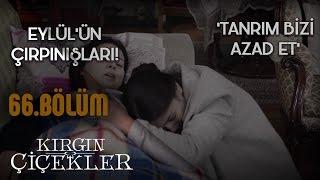 Gambar cover Tanrım Bizi Azad Et - Tuna Velibaşoğlu - Kırgın Çiçekler 66. Bölüm Klip