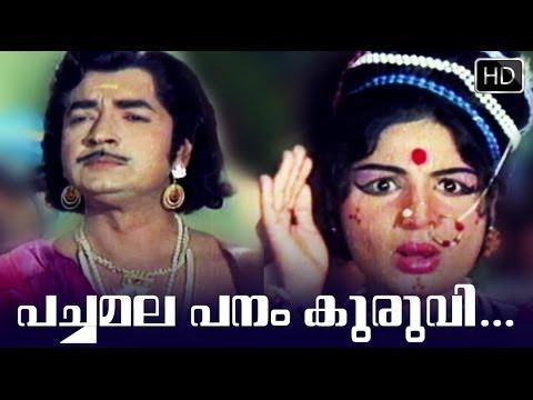Pachamala Panam Kuruvi... Song 5 | Arakkallan Mukkalkallan