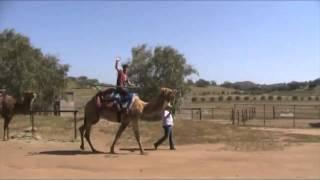 W1 - Erik Rides Camel 4-12-15