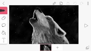 FlipaClip - Speed Drawing Wolf / Desenhando lobo