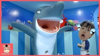 상어가족 거대 상어 뽀로로 키즈카페 습격 ! 꾸러기 미니 살려줘 ♡ 볼풀 놀이 어린이 장난감 색깔놀이 핑거송 인기동요 learn colors | 말이야와아이들 MariAndKids