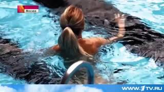 Новый аквапарк в Москве(В рамках программы оздоровления населения введен в эксплуатацию новый Центр Водных Развлечений в Москве..., 2015-03-31T20:17:32.000Z)