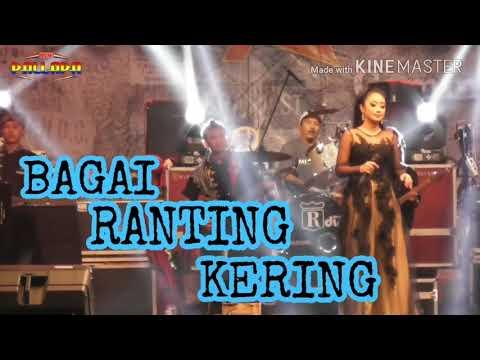 BAGAI RANTING KERING ANISA RAHMA NEW PALLAPA LIVE MIANK 2018