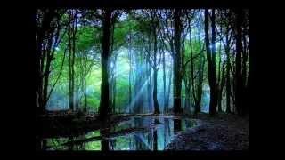 Baltes vs. Stevens - Eternal Silence (Vocal Club Mix)