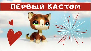 LPS Кастом/ООАК Туториал Европейской Кошки, Мой Первый Кастом