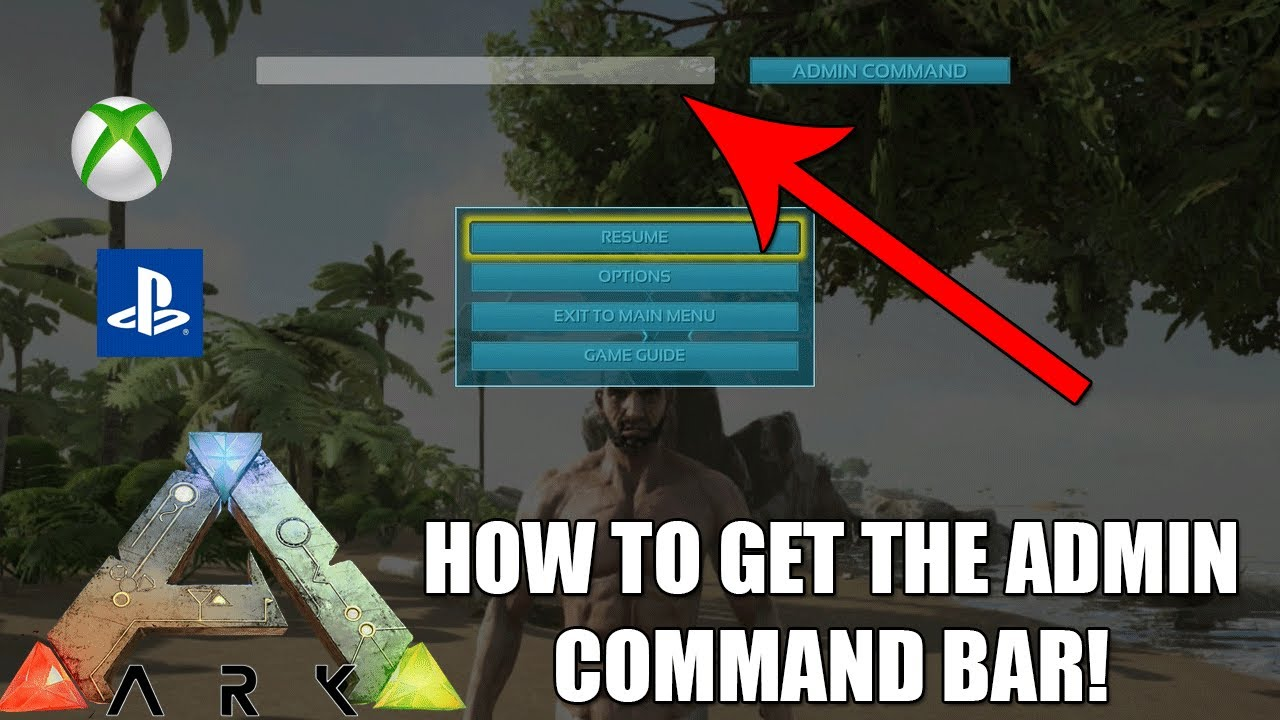 ARK HOW TO ACCESS THE ADMIN COMMAND BAR USE CONSOLE