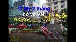 Định cư Mỹ chưa được 2 tháng, cả nhà bỏ về Việt Nam !... Sao dzậy ?