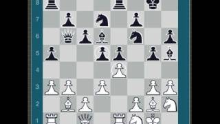 1997- Kasparov vs Deep Blue Game 1 (ChessMaster: Grandmaster Edition)