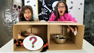 What's in the Box Challenge!!!!!! funny video