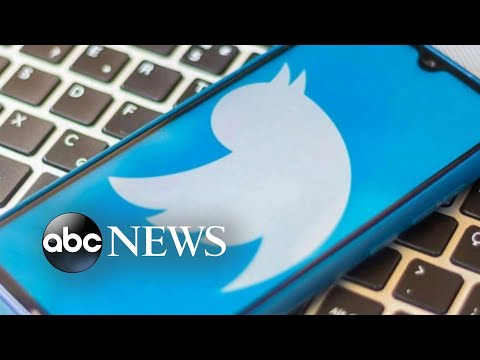 Breaking down social media's impact on politics 15 years after Twitter's launch