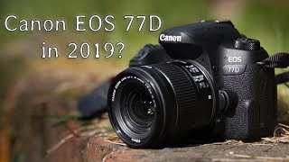 Should you buy the Canon EOS 77D in 2019? (Review and Image test)