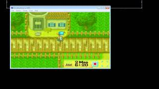 Cheat master harvest moon friends of mineral town