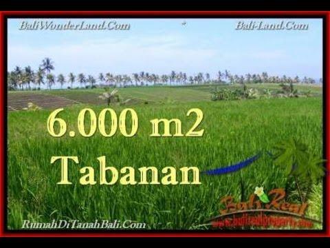 Exotic PROPERTY LAND SALE IN TABANAN BALI TJTB267