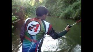 Repeat youtube video เทสเหยื่อโดนปลาอะไรมาดูกัน แม่น้ำป่าสักครับ