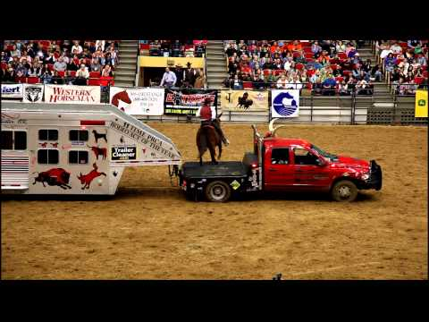 Onearmed bandit John Payne with His Buffalo at the MidAmerica Horse Fair in 2011