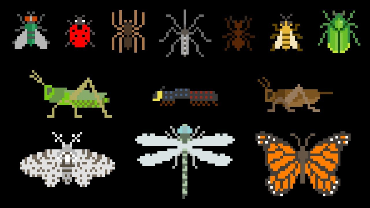 Download Creepy Crawlies - Book Version - Insects, Bugs, Spider, Caterpillar - The Kids' Picture Show