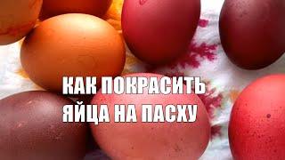Как красить яйца на Пасху легко и быстро