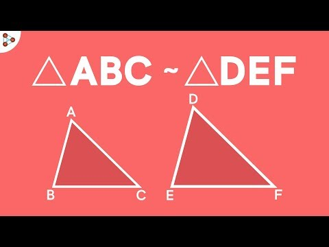 When are Two Triangles Similar?   Don't Memorise