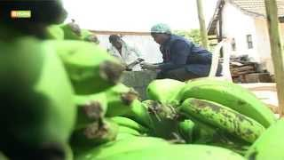 Smart farm - Banana value addition