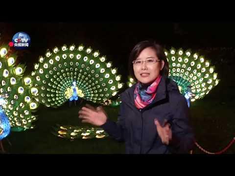 G20 Summit Chinese Lantern Festival