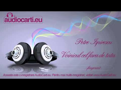 sursa audio