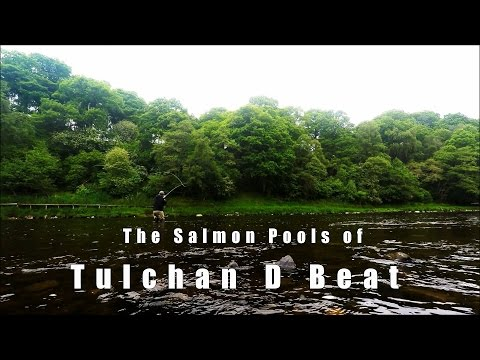 River Spey - Tulchan D Salmon Fishing