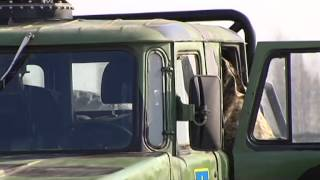 В Украину прибыли первые бронированные военные авто из США
