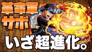 【トレクル】革命軍サボ超進化してみた!!必殺技紹介など【sabo☆6+】 thumbnail