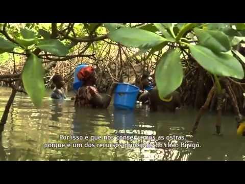 Neram N'Dok   Ilhas Bijagós, Guiné Bissau