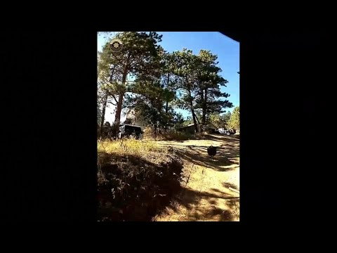 Dr. Taco - VIDEO: Turkey Chases Colorado Sheriff Deputies