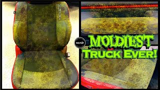 Deep Cleaning the MOLDIEST TRUCK EVER! Satisfying Interior BIOHAZARD Car Detailing A Dodge Ram Rebel